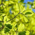 春から夏にかけての季節の変わり目の朝活で気をつけることは【寒暖差に注意する】